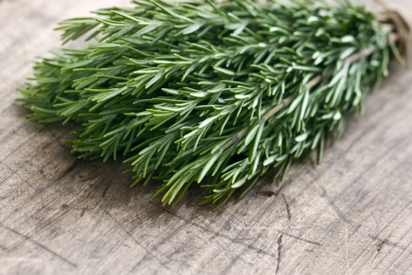 The Wonders of Rosemary!